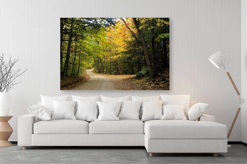 תמונה לסלון - שוש אבן - שביל ביער - מק''ט: 128750