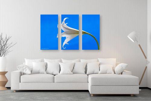 תמונה לסלון - שרית סלימן - כחול ולבן - מק''ט: 134515