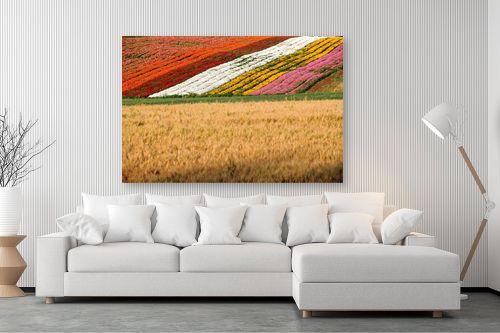 תמונה לסלון - אייל הצפון - שטיח פריחות - מק''ט: 141989