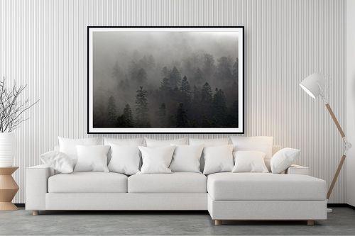 תמונה לסלון - אורלי שטטינר - ברושים בערפל - מק''ט: 145719