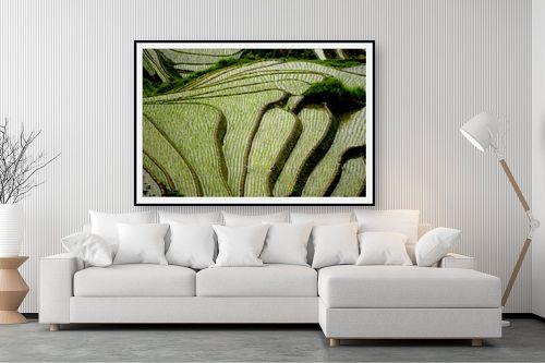 תמונה לסלון - ענת שיוביץ - טרסות אורז סין - מק''ט: 163417