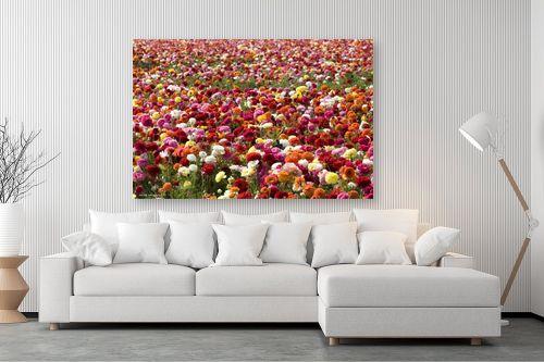 תמונה לסלון - שרית סלימן - פרחים פרחים - מק''ט: 187456