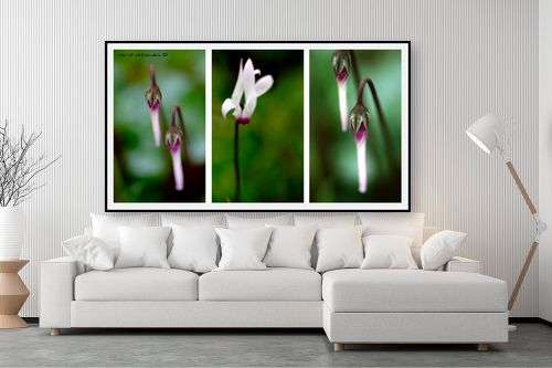 תמונה לסלון - שרית סלימן - Triptych3 - מק''ט: 196450