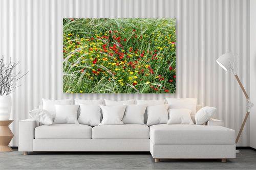 תמונה לסלון - אורי לינסקיל - פריחה באדום צהוב - מק''ט: 211070