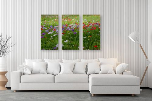 תמונה לסלון - מיכל פרטיג - שלל צבעים - מק''ט: 211738