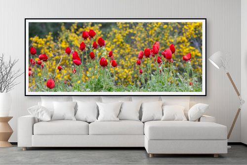 תמונה לסלון - אורי ברוך - אדום על צהוב - מק''ט: 217090