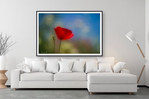 תמונה לסלון - דורית ברקוביץ - פשוט יפה - מק''ט: 260739