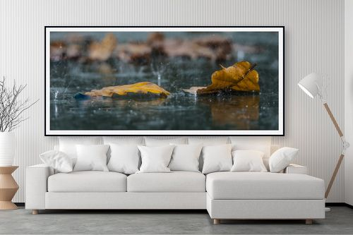 תמונה לסלון - שי וייס - שלכת אלונים ביום גשם - מק''ט: 277329