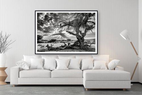 תמונה לסלון - ארי בלטינשטר - שקיעה בשחור ולבן. - מק''ט: 279322