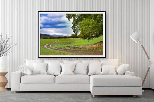 תמונה לסלון - שי וייס - שביל לשדות - מק''ט: 282636