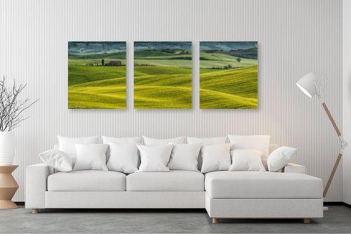 תמונה לסלון - דורית ברקוביץ - מרבדים ירוקים - מק''ט: 284907