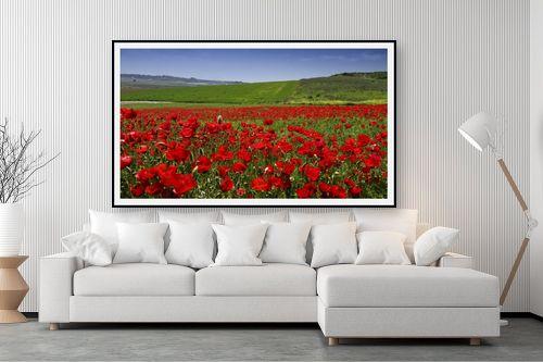 תמונה לסלון - אורי ברוך - שדות פרג לנצח - מק''ט: 300152