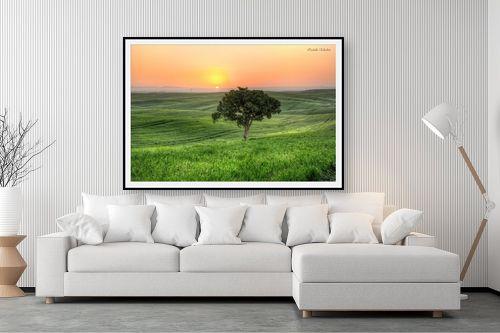 תמונה לסלון - איזבלה אלקבץ - עץ בודד (HDR) - מק''ט: 304018