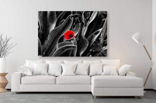 תמונה לסלון - ארי בלטינשטר - צבע אדום - מק''ט: 309634