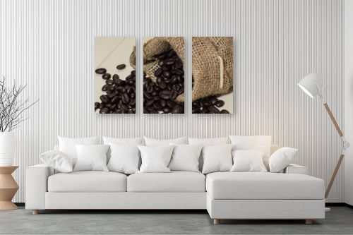 תמונה לסלון - טניה קלימנקו - פולי קפה - מק''ט: 313980
