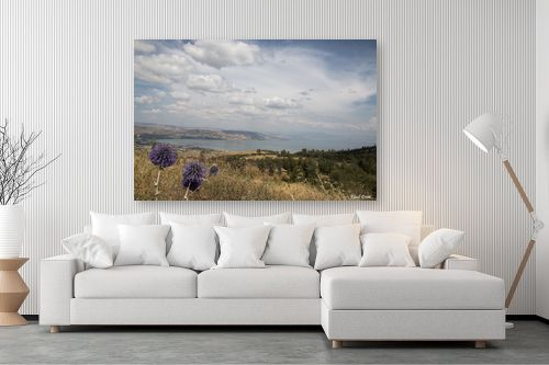 תמונה לסלון - אלעד דרור - קסם על ים כנרת - מק''ט: 315801