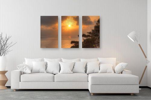 תמונה לסלון - מתן הירש - עץ ושקיעה בים - מק''ט: 330949