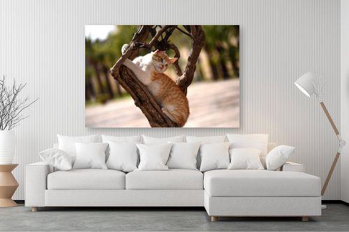 תמונה לסלון - אורלי שטטינר - חתול על גזע עץ - מק''ט: 332018