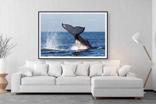 תמונה לסלון - אבנר ירון - מפרץ ווטומבה 4 - מק''ט: 335273