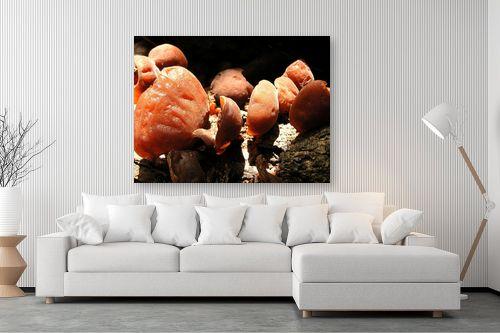 תמונה לסלון - משה יפה - מניפות אדומות - מק''ט: 47648