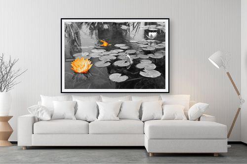 תמונה לסלון - אלי נגר - פרח ודג - מק''ט: 57346