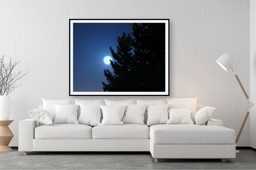 תמונה לסלון - משה יפה - בראש כחול - מק''ט: 6089