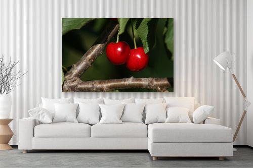 תמונה לסלון - מיכל פרטיג - פרי גן עדן - מק''ט: 87432