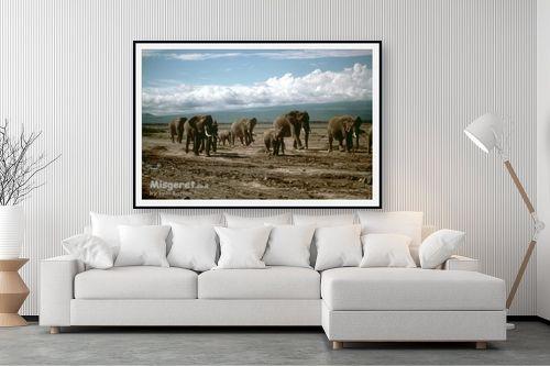 תמונה לסלון - אייל ברטוב - עדרים בנדידה - מק''ט: 9641