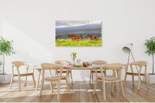 תמונה לפינת אוכל - מיכאל שמידט - סיפור סוסים - מק''ט: 230451