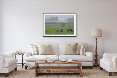 תמונה לסלון - קובי פרידמן - סוסים - מק''ט: 107351