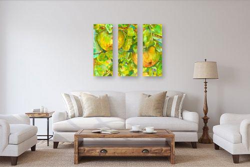תמונה לסלון - חיה וייט - שני תפוחים - מק''ט: 246066