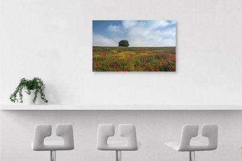 תמונה לבר - דורית ברקוביץ - לבד בין הפרחים - מק''ט: 282525