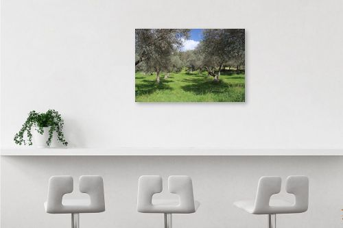 תמונה לבר - אבי סימן-טוב - שדרות עצים - מק''ט: 315717