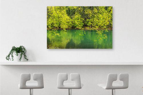 תמונה לבר - דורית ברקוביץ - גוונים של ירוק - מק''ט: 333396