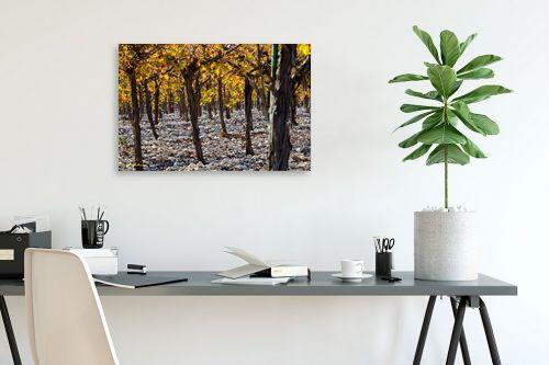 תמונה לפינת עבודה - ארי בלטינשטר - ביער הגפנים - מק''ט: 218051