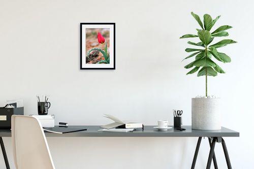 תמונה לפינת עבודה - קובי פרידמן - צבעוני - מק''ט: 24225
