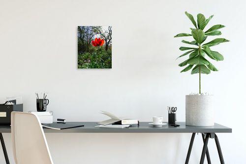 תמונה לפינת עבודה - ארי בלטינשטר - אדום אדום - מק''ט: 326634