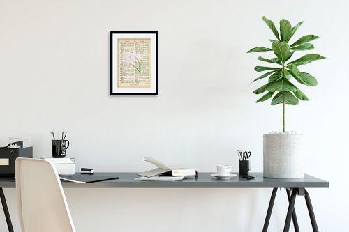 תמונה לפינת עבודה - Artpicked - סחלב לבן רטרו על טקסט - מק''ט: 330215