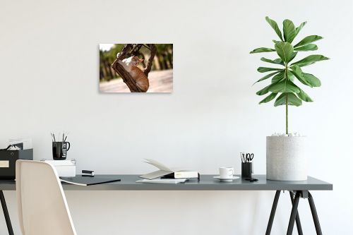 תמונה לפינת עבודה - אורלי שטטינר - חתול על גזע עץ - מק''ט: 332018