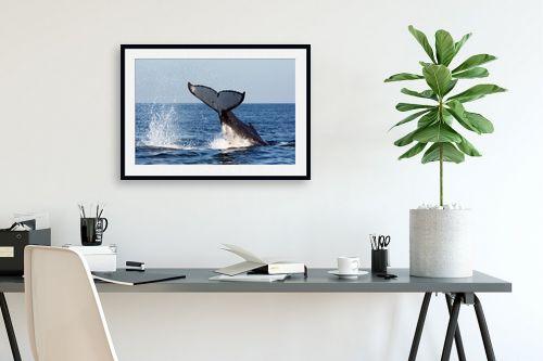 תמונה לפינת עבודה - אבנר ירון - מפרץ ווטומבה 4 - מק''ט: 335273