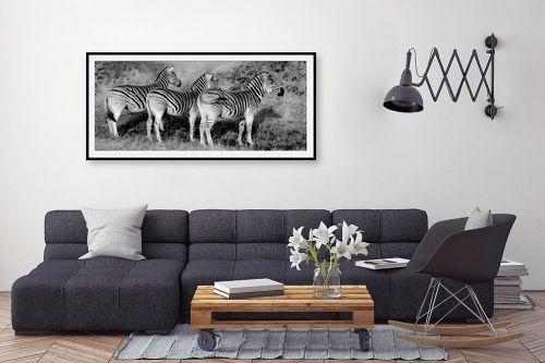 תמונה לסלון - שי וייס - שלוש זברות בשורה - מק''ט: 271589