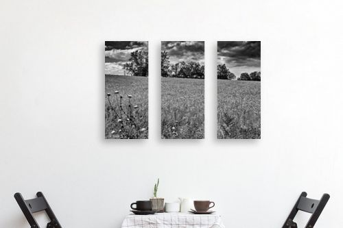 תמונה לפינת אוכל - ארי בלטינשטר - שדות דגן לנצח - מק''ט: 202759