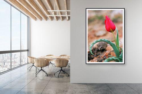 תמונה למשרד - קובי פרידמן - צבעוני - מק''ט: 24225