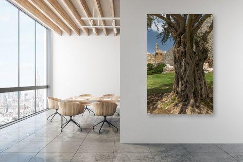 תמונה למשרד - מיכאל שמידט - שורשי דוד המלך - מק''ט: 258796