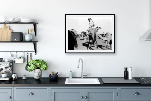 תמונה למטבח - דוד לסלו סקלי - ג'ירג'ה 1940 מרוץ גמלים - מק''ט: 143790