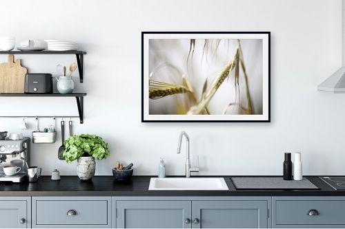 תמונה למטבח - איה אפשטיין - שיבולים - מק''ט: 201939