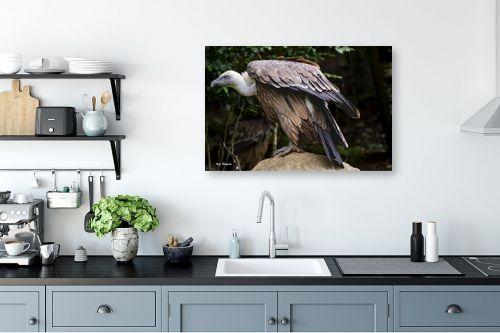 תמונה למטבח - ענת שיוביץ - golden eagle נשר זהוב - מק''ט: 325208