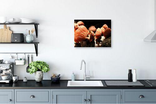 תמונה למטבח - משה יפה - מניפות אדומות - מק''ט: 47648