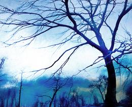 כחול ולבן