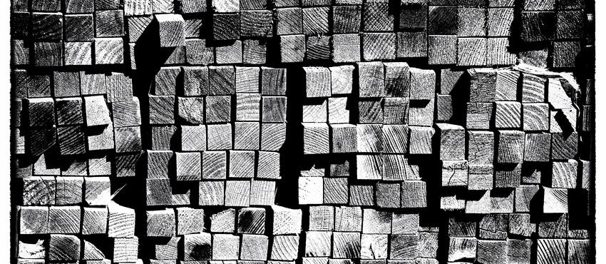 גלריית תמונות שחור לבן